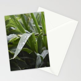Water Droplets on Iris Leaves Stationery Cards