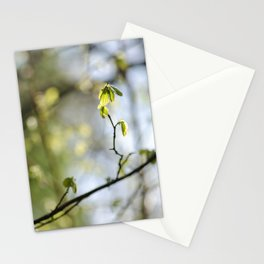 Nature's Bokeh Stationery Cards
