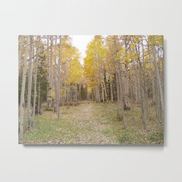 Now Theres a Campsite! Metal Print