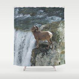 Big Horn Sheep & Rocky Mountain Waterfall Shower Curtain