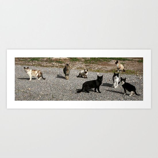 Seven cats Art Print