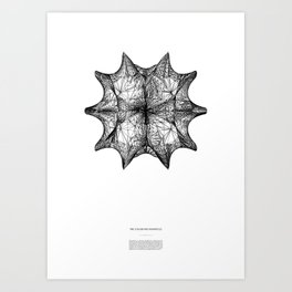 The Calabi-Yau Manifold - White Art Print
