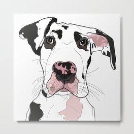 Great Dane Dog (b/w/pink) Metal Print