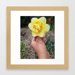 A Flower 4 Uq Framed Art Print