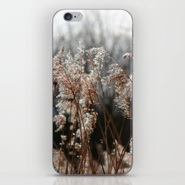 Freedom For The Soul iPhone Skin