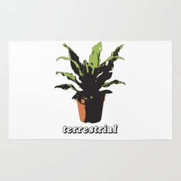 terrestrial Rug