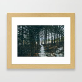At the end of the woods Framed Art Print