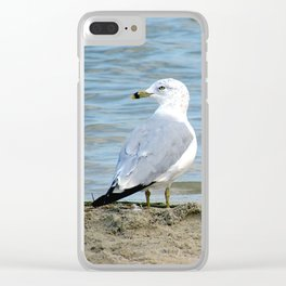 Untitled, Maumee Bay Clear iPhone Case