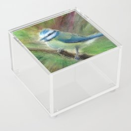 Cyanistes Caeruleus in Oil Pastels Acrylic Box