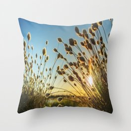 Cotton grass from the high moorland Throw Pillow