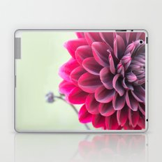 Burgundy Dawn Dahlia 2 Laptop & iPad Skin