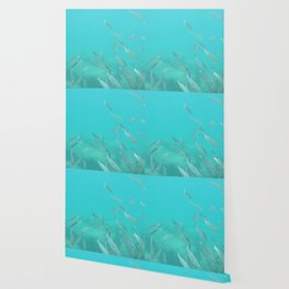 Hello fishies in turquoise water Wallpaper