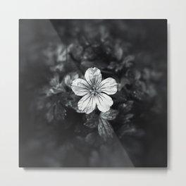 Minimalistic black and white flower petal Metal Print