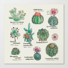 Cactus Dictionaly page1 Canvas Print