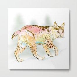 Bobcat in Color Metal Print
