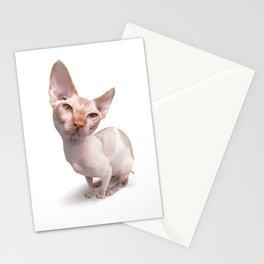 Baldy Stationery Cards