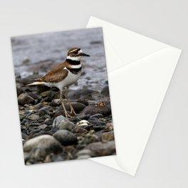 Killdeer on Rocky Shore Stationery Cards