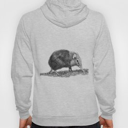 Black Shrew Hoody