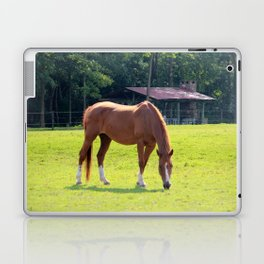 Rustic Scene Laptop & iPad Skin