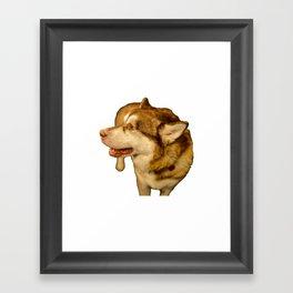 Malamute Portrait 02 Framed Art Print