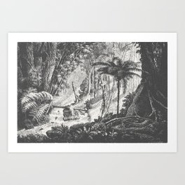 Brazilian Jungle Art Print