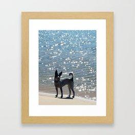 Aussie on the Beach Framed Art Print