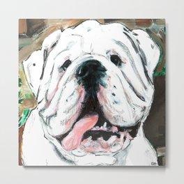 English bulldog // White  Metal Print
