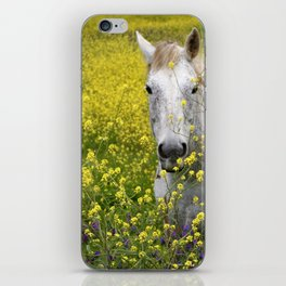 White Horse in a Yellow Pasture iPhone Skin