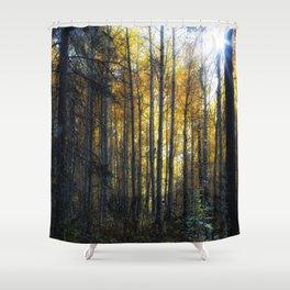 Shining Through Shower Curtain