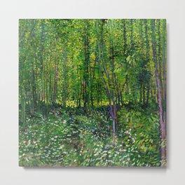 Vincent Van Gogh Trees & Underwood Metal Print