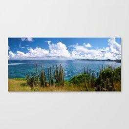 Ocean Coast Canvas Print
