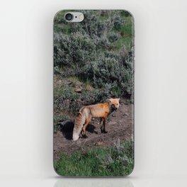 Smirking Fox iPhone Skin