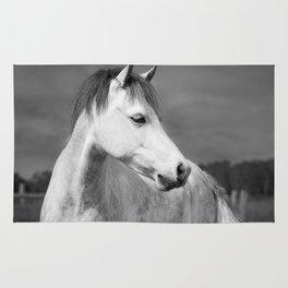 Storm Horse Rug