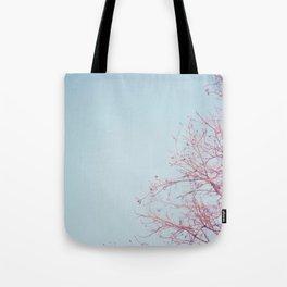 Peek-a-Boo Moon Tote Bag