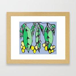 Wattle Framed Art Print