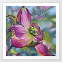Perfectly Pink Dogwood Blossom Art Print