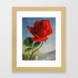Fresh Red Rose Framed Art Print