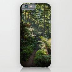 Nature Walk iPhone 6s Slim Case