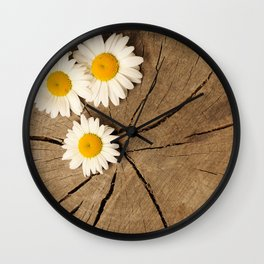Daisies on wooden background Wall Clock
