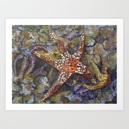 Star Light Star Bright Art Print