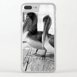 Juvenile Brown Pelican Tale 4 Clear iPhone Case