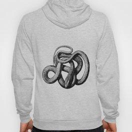 The Snake Hoody