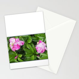 Pivoines dans le jardin Stationery Cards