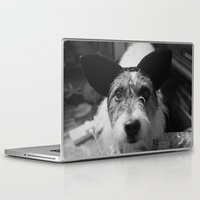 jack russell Laptop & iPad Skins featuring Jack Russell by Arianne Kenworthy Photography