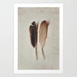 Feathered Pair Art Print
