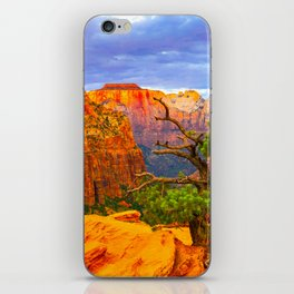 Zion National Park Canyon Overlook Print iPhone Skin