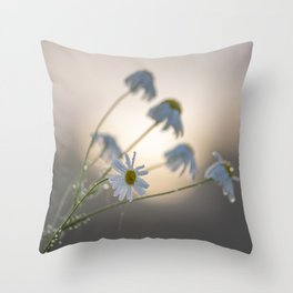 New day with dewy daisy Throw Pillow