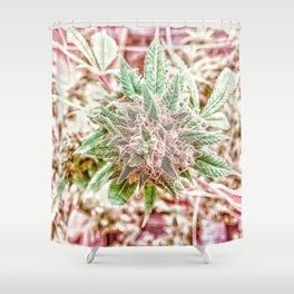 Flower Star Blooming Bud Indoor Hydro Grow Room Top Shelf Shower Curtain