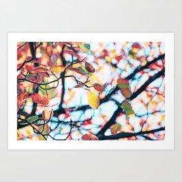 Happy Autumn Colors Art Print