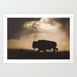 Bison in the Storm - Badlands National Park Art Print